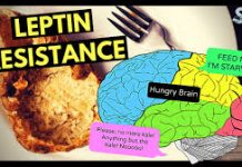 Is leptin resistance real?